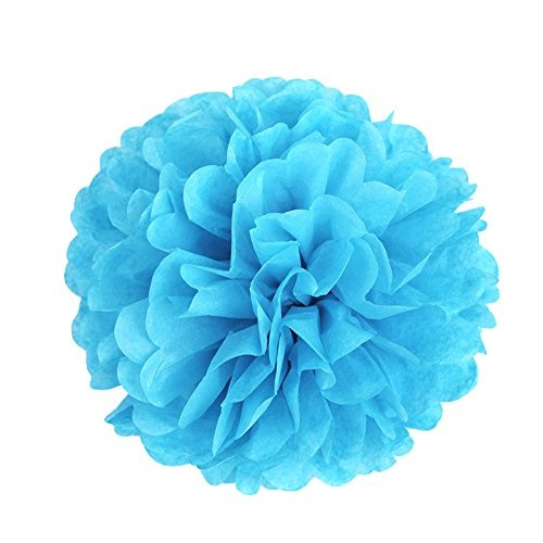Wish 8er Set Tissue Papier Blume Pompom Honeycomb Wabenball