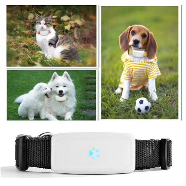 Mini Dog GPS Tracker Cat Pet GPS Locator Waterproof 400 Hours Standby Dog  Finder support Free Web IOS Android APP