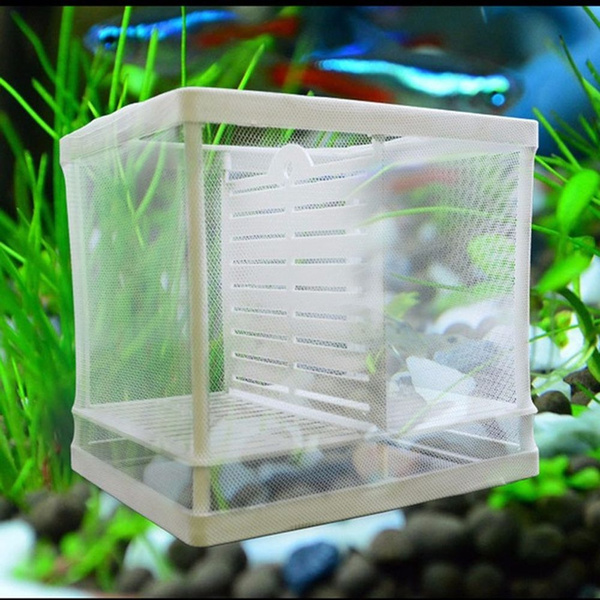 Tank Fishing Net Breeder Nursery Net Breeding Box Incubation Box Isolated Box
