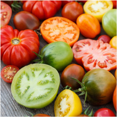 tomato, rainbow, Yellow, tomatoseed