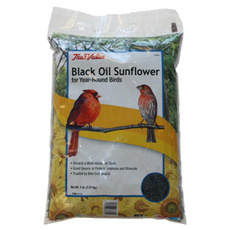 birdfoodsupplie, black, For Your Pet, Sunflowers