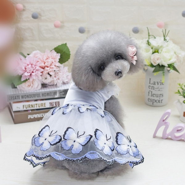 Blue Tutu Dog Puppy Ballerina Lace Print Dress