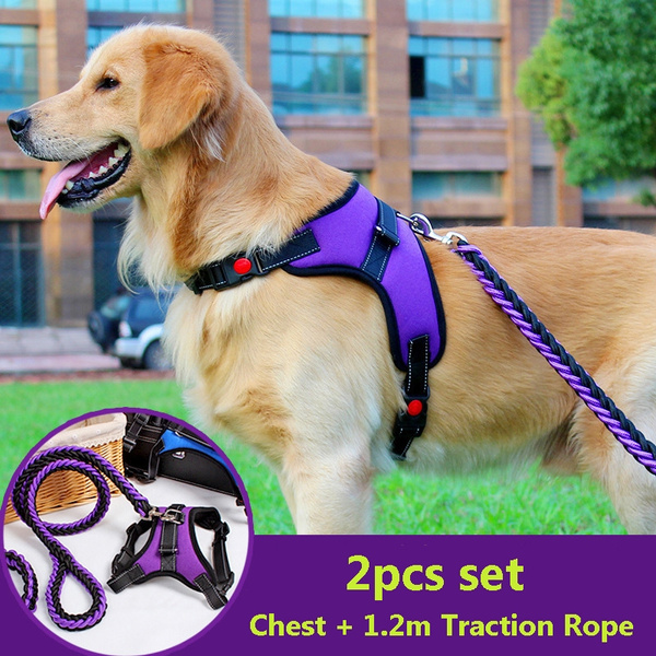 petcheststrap, Dog Collar, petaccessorie, pet outfits