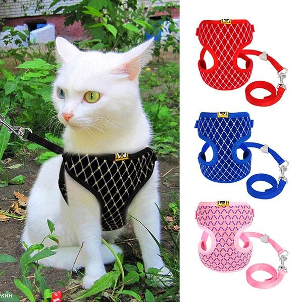 cute, Vest, Adjustable, Pets