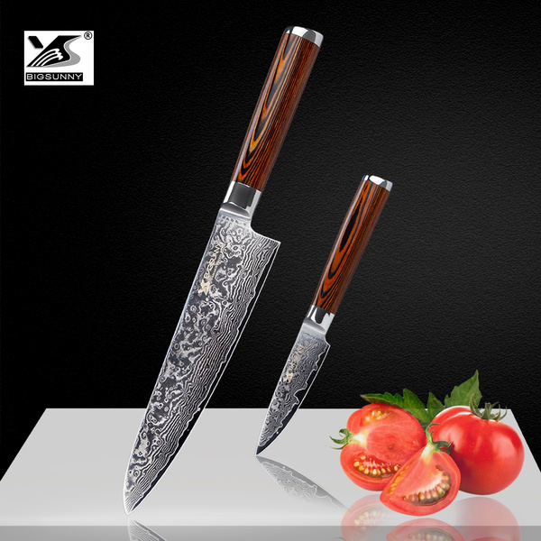 Surprising Bigsunny Kitchen Knife Set Damascus Steel Knife Set 2 Piece 8 Chef Knife And 3 5 Paring Knife Professional Kitchen Cutlery Set With Pakkawood Home Interior And Landscaping Ologienasavecom