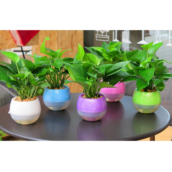 Ipotch Lazy Flower Pots Water Plants Pot Self Watering Planter