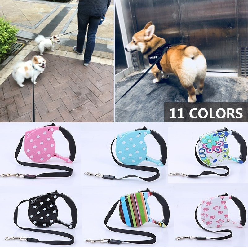 5m Pet Dog//Cat Puppy Automatic Retractable Traction Rope Walking Lead/_Leash 3m