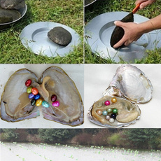 diydecoration, shells, Jewelry, Gifts