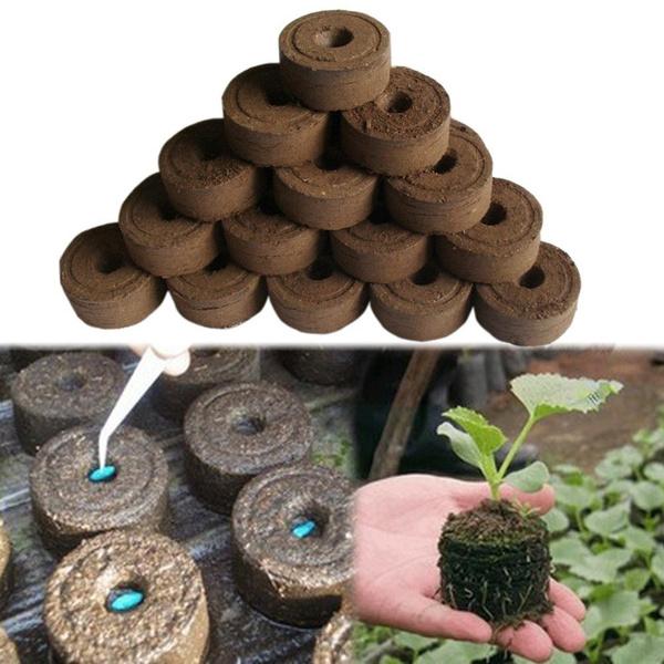 flowerplantsampseedling, Gardening Tools, compressedmud, Gardening Supplies
