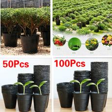 Plants, Garden, plantcontainer, seedling
