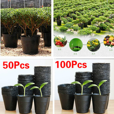 Plants, Garden, plantcontainer, seedling