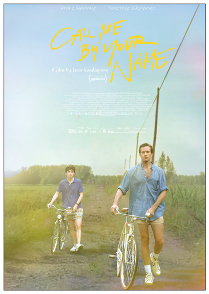 Wish Coated Paper Movie Poster Call Me By Your Name Hot Art Poster