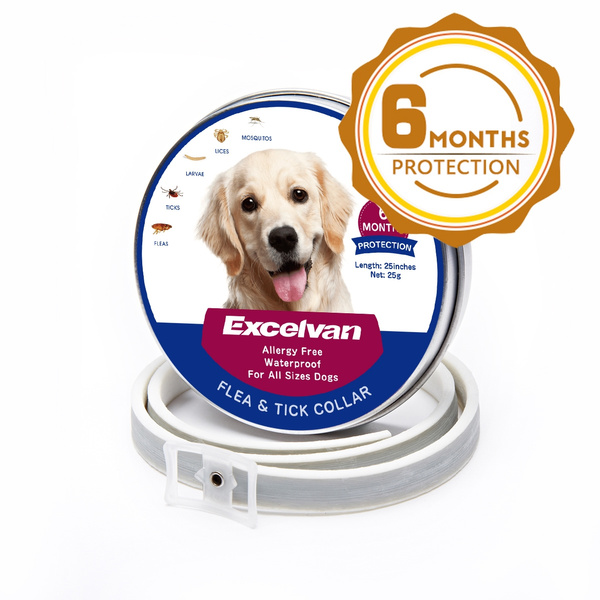 Flea Control Collar for Dogs and Puppies Quick and long lasting protection  Flea and Tick Collar for Large Dog, 6 Months Protection