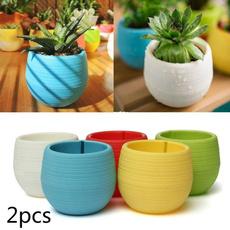 cute, Plants, flowerpot, minipot