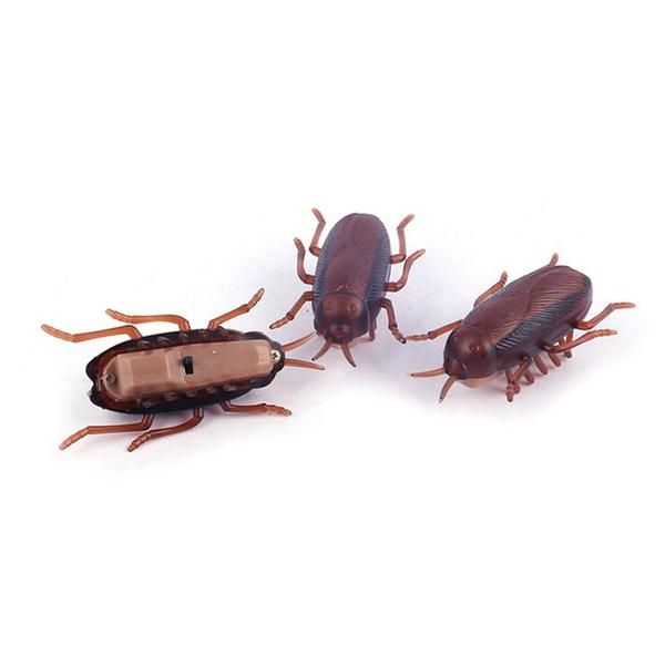 Toy, roachtoy, crotonbugtoy, cockroachtoy
