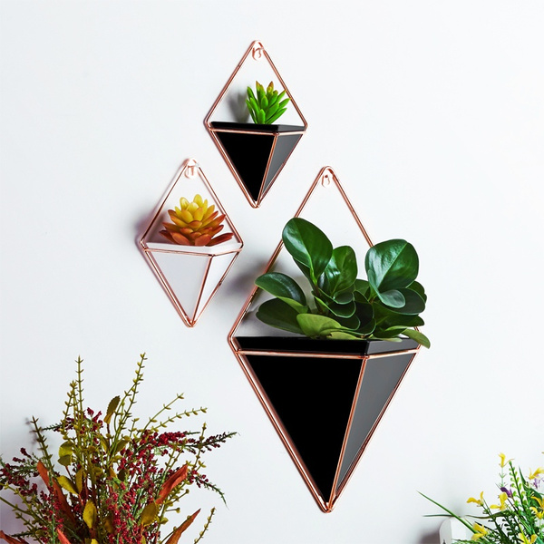 geometricshape, Bonsai, wallhangingflowerpot, Flowers