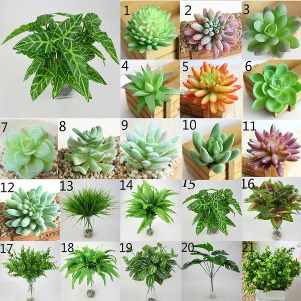 succulent, flowersampplant, desktopornament, Home Decor