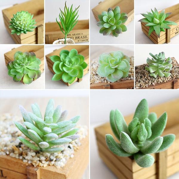 succulent, Decor, Flowers, Home Decor