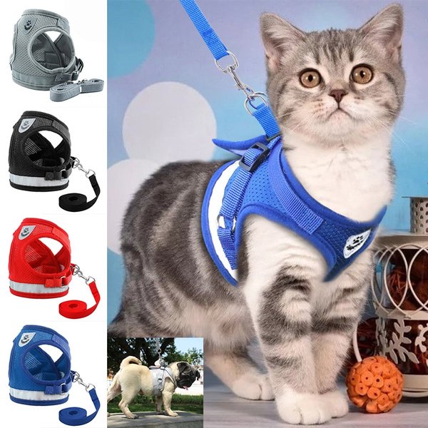 dog accessories, Fashion, Jacket, dogharnes