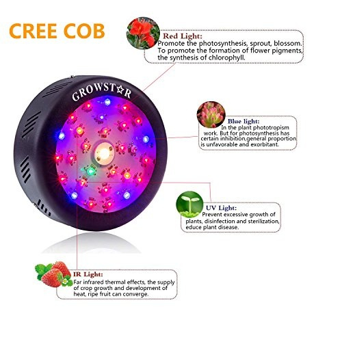 UFO Led Grow Light, Growstar 150W Full Spectrum Plant Light with Cree COB  and Switch for Indoor Plants Seeding, Growing and Flowering  (150w)
