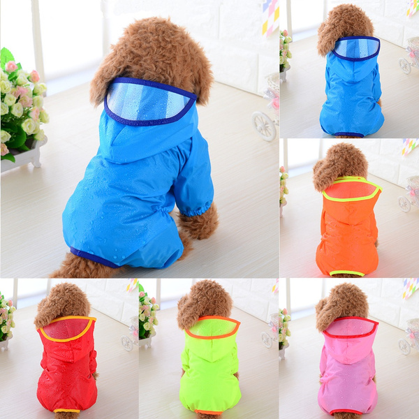 puppy, Waterproof, Pets, Coat