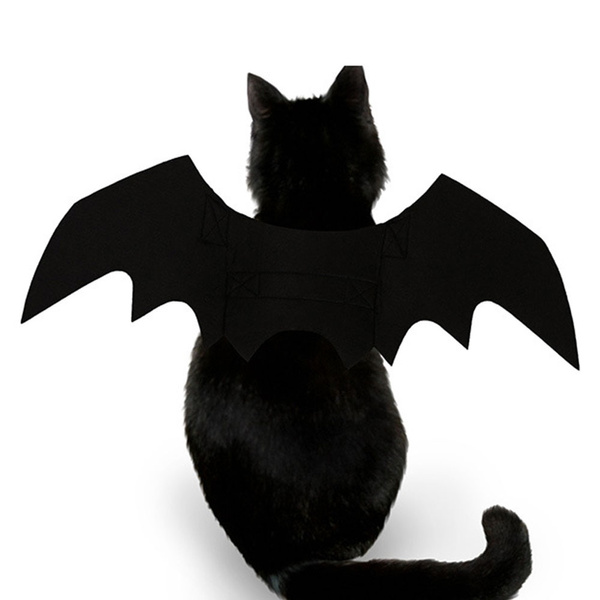 halloween cat costume bat wings halloween