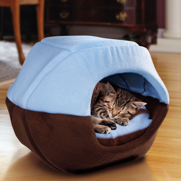 puppy, Cat Bed, Pets, dogampcat