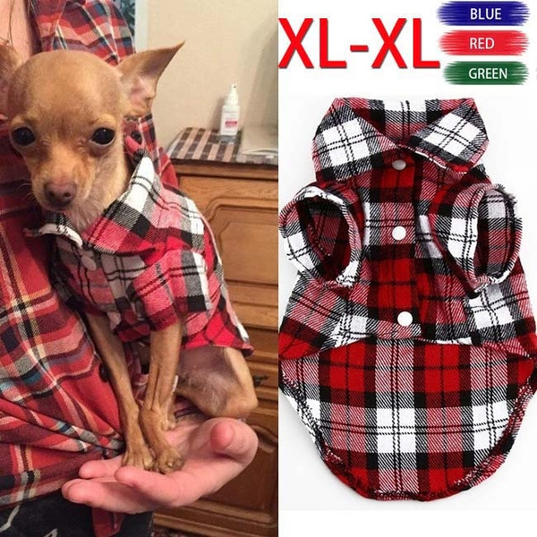 cataccessiory, pettshirt, Fashion, dog coat