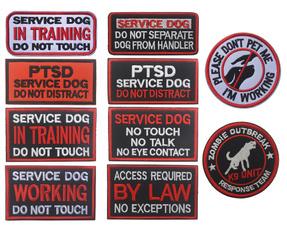 donottouch, Vest, servicedog, intraining