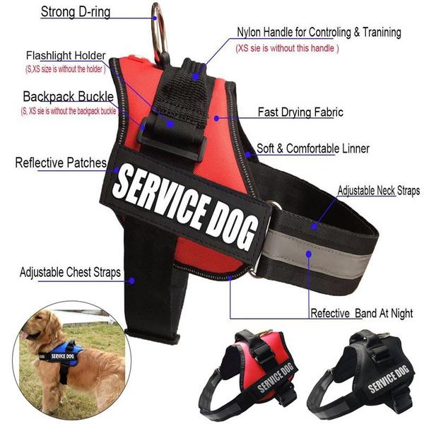 Vest, reflectivevest, dogk9training, Pets