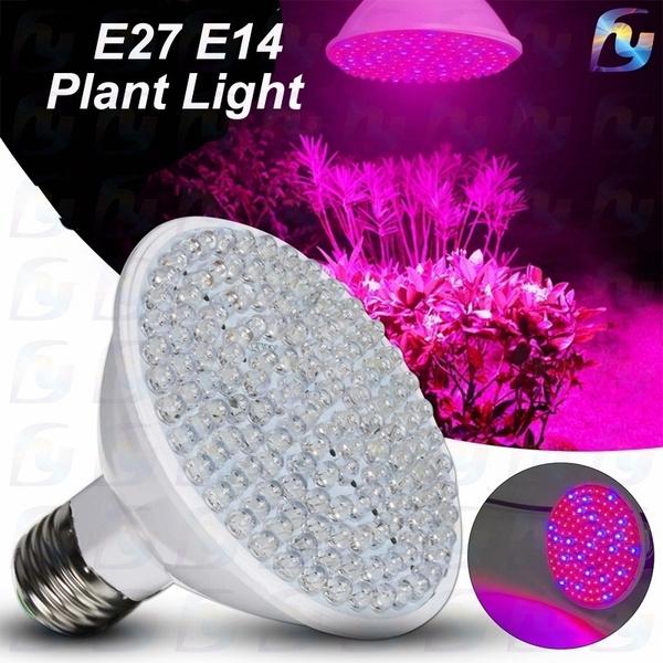 growinglight, Plants, Flowers, hydroponiclight