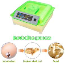 electriceggincubator, automaticaleggincubator, eggincubator56, eggincubator