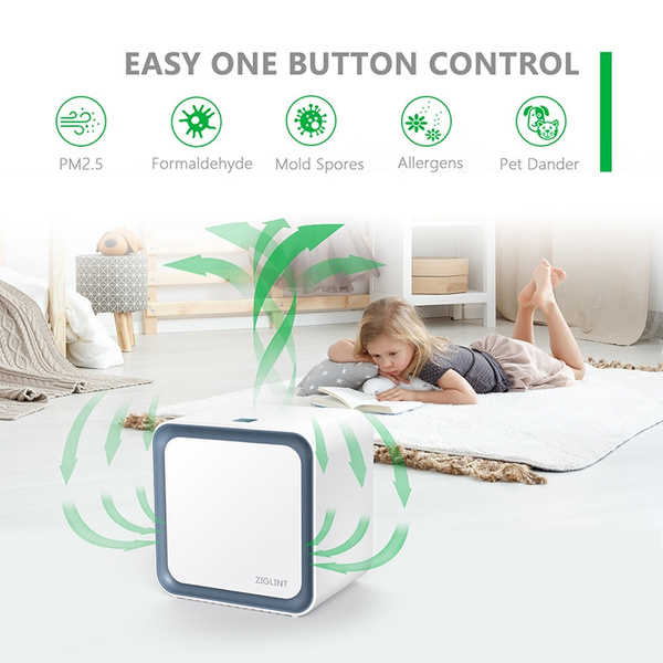 Ziglint 3 in 1 Ionic Air Purifier with HEPA Filter Portable Quiet Mini Air Purifier Ionizer to Reduce Mold Odor Smoke for Desktop Small Room up to