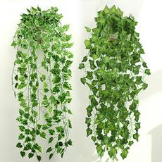 lvyleave, leaves, Plants, leaf