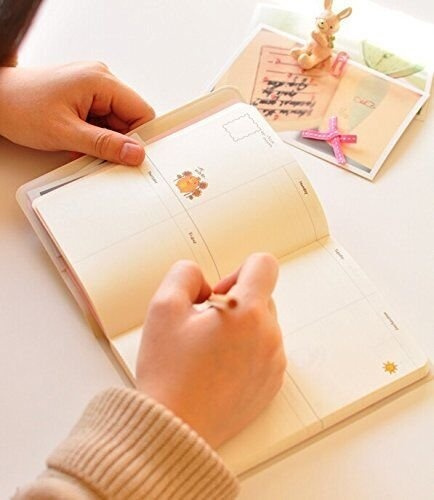 wish haiker white molang rabbit diary any year planner pocket