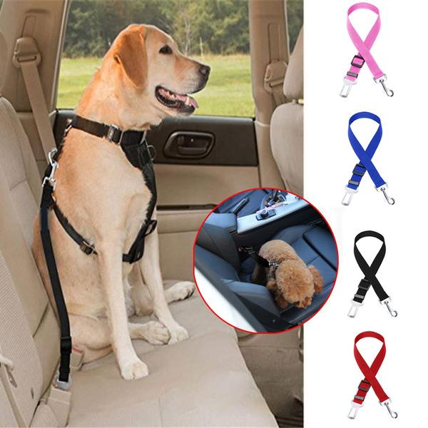 Harness, dogbelt, Mode, petaccessorie