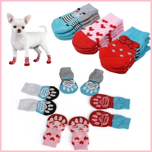 dogssock, chihuahuaboot, Winter, Pets