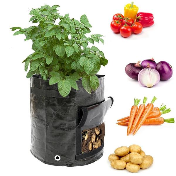 uv, Gardening, Garden, potatogrowbag