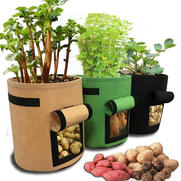 seedsgrowbox, plantbag, Garden, plantcontainer