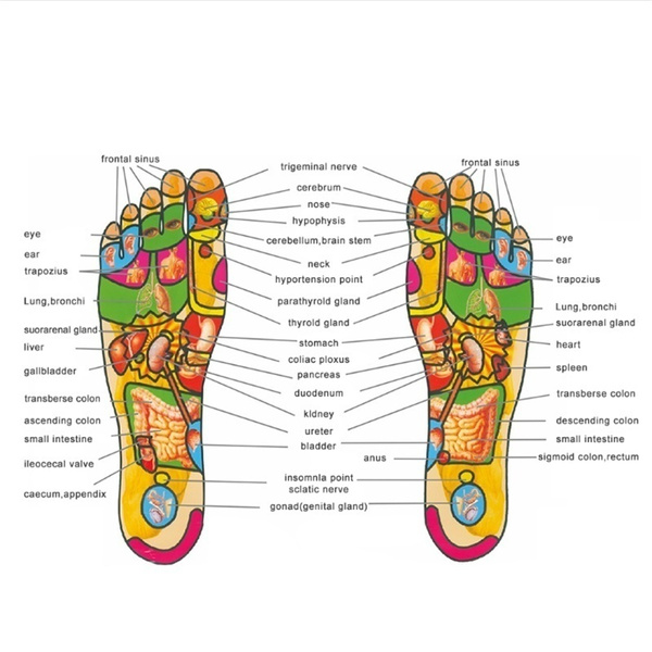 Wish   Massage health weight loss therapy analgesic insole can cut magnetic therapy insole acupuncture point treatment bow support insole cushion finger pressure needle 18 magnet memory cotton magnet insoles unisex