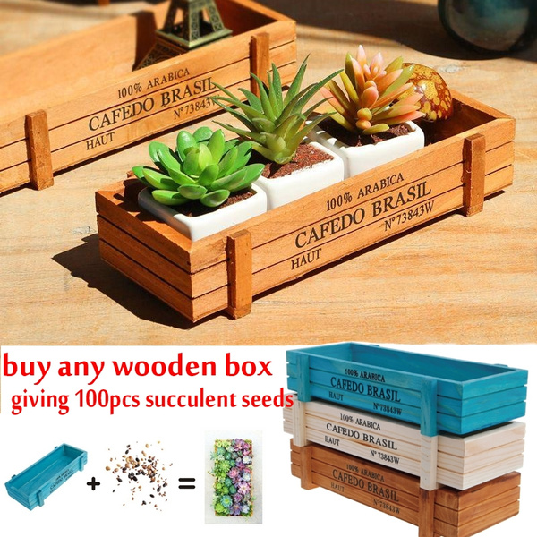 Bonsai, Box, Embellishments, Gardening