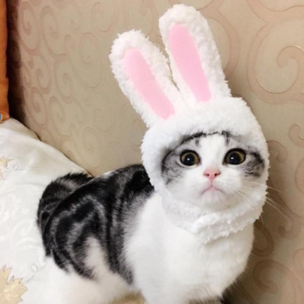 rabbitear, Fashion, Cosplay, petaccessorie