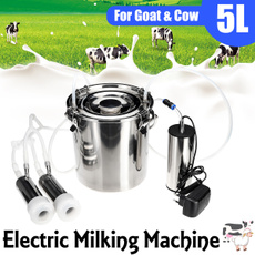 Sheep, milkbucket, electricmilker, Tank