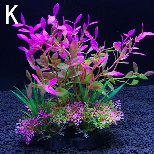 Plantes, fishaquarium, Décoration, lherbedesaquarium