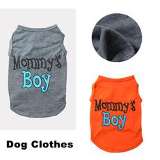 teddyclothe, Teddy, puppyaccessorie, puppyjacket