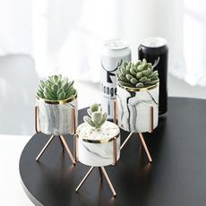 Plants, flowerpot, living room, hydroponic