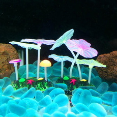 decoration, greenwaterplant, Tank, Mushroom