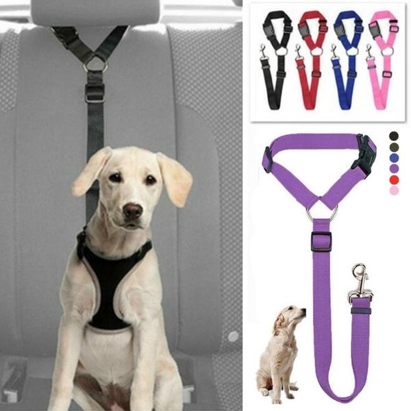Fashion Accessory, Fashion, puppystuff, Dogs