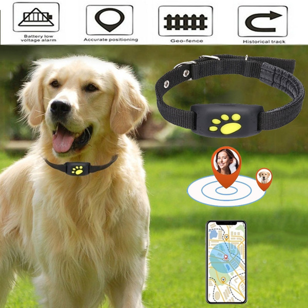 Android Pet GPS Collar Tracker Locator /& Activity Monitor Tracking Dogs Cats