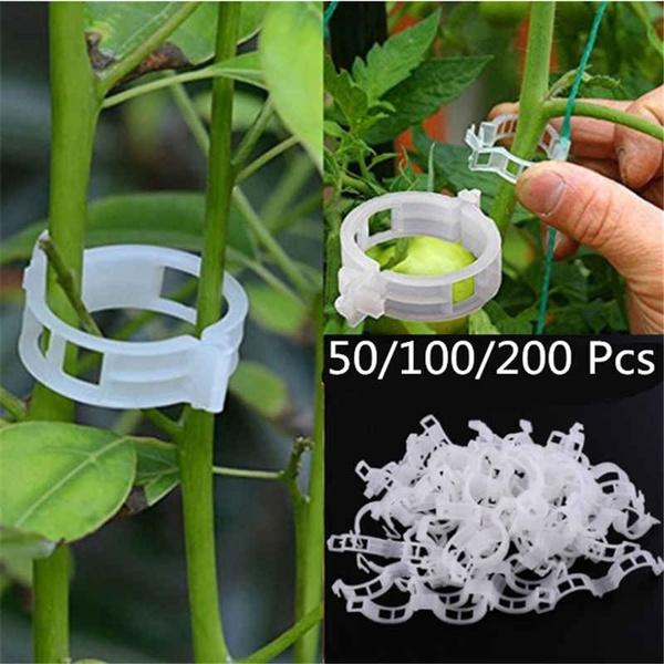 50/100/200 Pcs Plastic Plant Support Clips for Tomato Hanging Trellis Vine Connects Plants Greenhouse Vegetables Garden Ornament